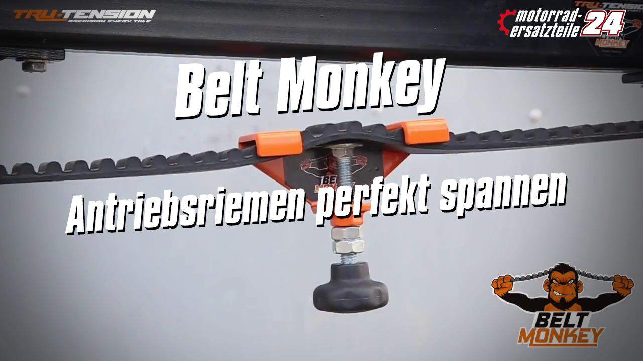 Chain-Monkey_Logo.jpg